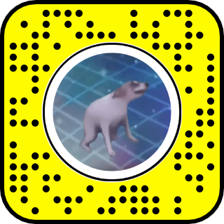 filtre snap chien dansant