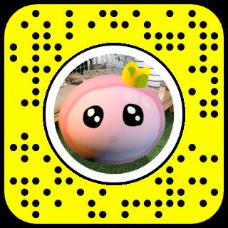 Filtre snapchat Princesse rose