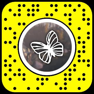 Filtre snapchat effet papillon