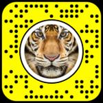 Lens snapchat tigre